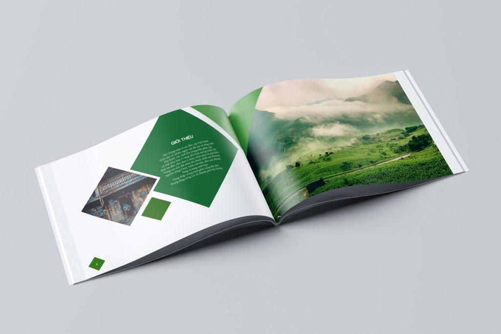 thiet ke catalogue 024