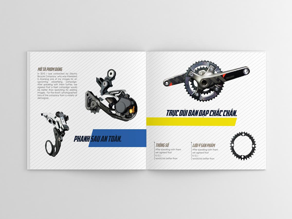 catalogue105
