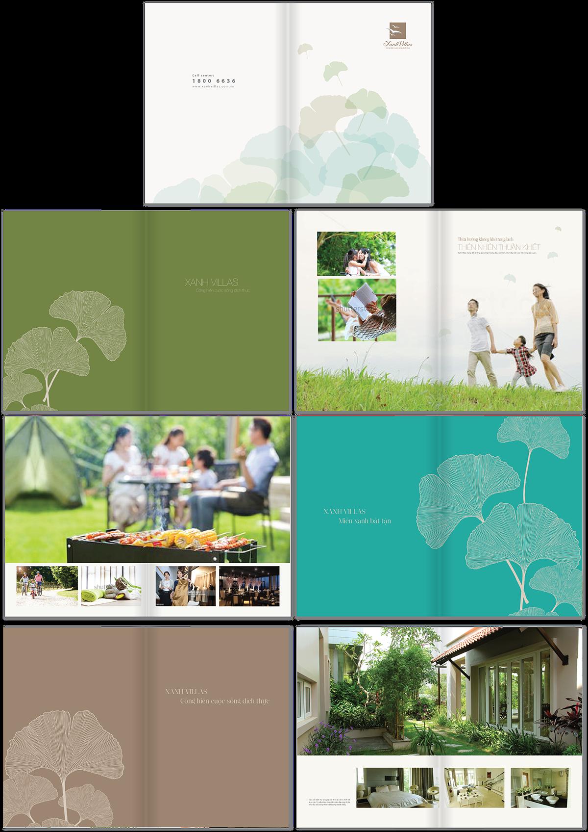 brochure108